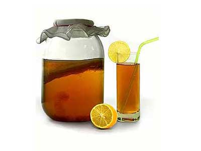 Целебный чайный гриб, полезные свойства и противопоказания.