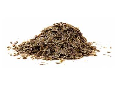 Целебные семена укропа, полезные свойства и противопоказания.
