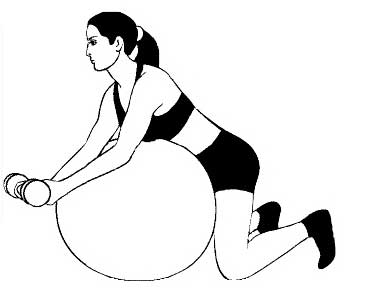 Какие бывают упражнения для рук на фитболе?